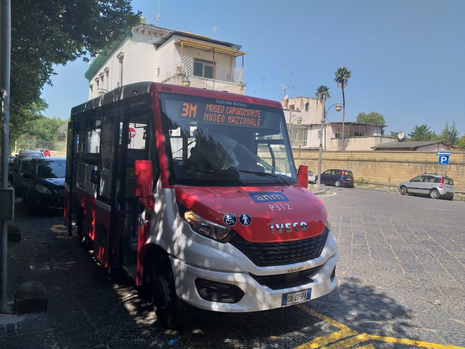 bus 3 m