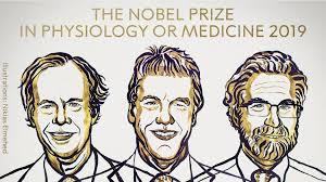 nobel medicina 2019