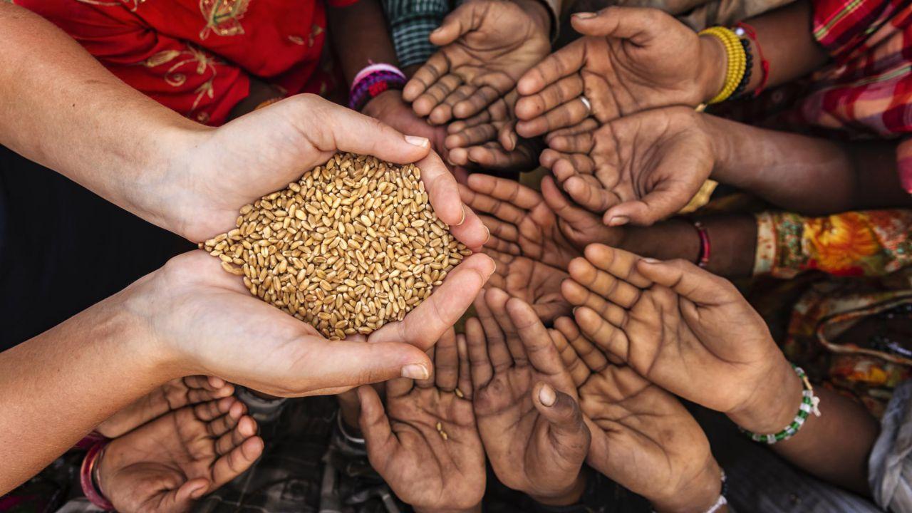 un analisi 500 000 studi mostra come porre fame mondo v4 474537 1280x720